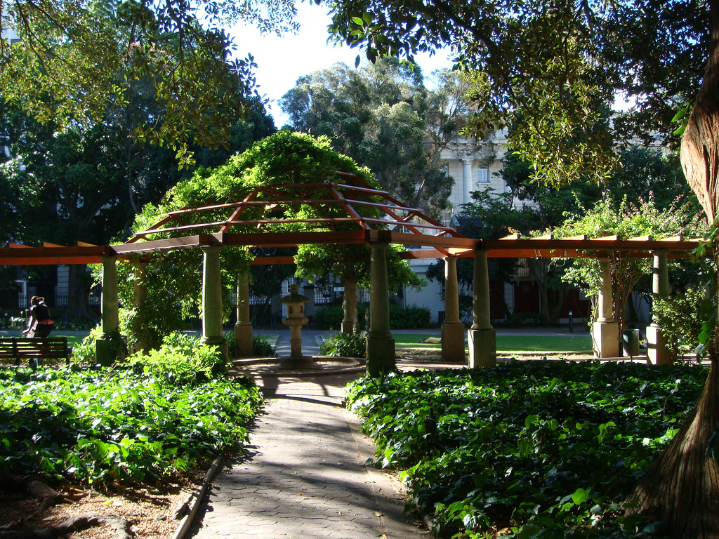 Cape town 39 s most beautiful parks and gardens for Park towne