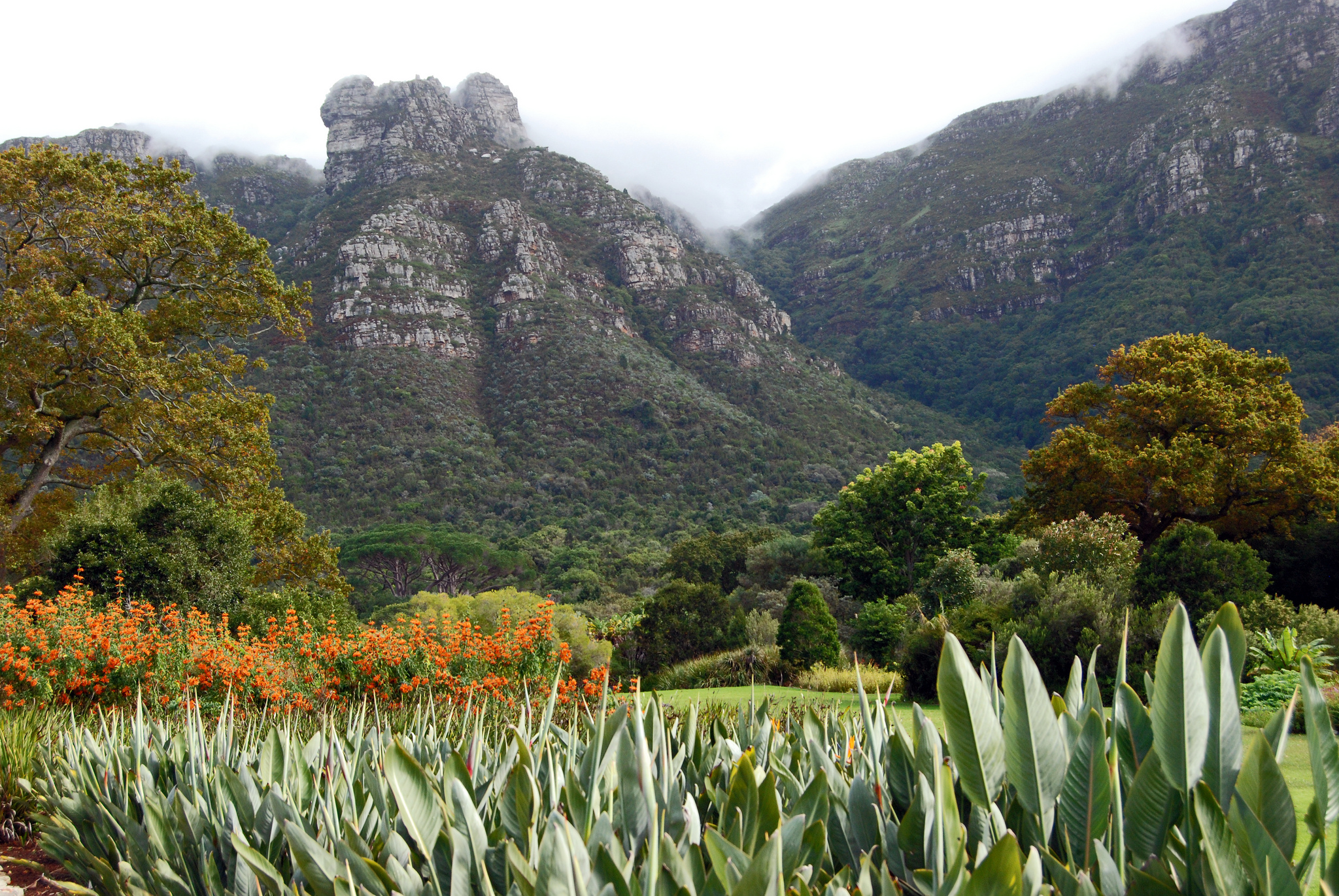 Cape Town 39 S Most Beautiful Parks And Gardens