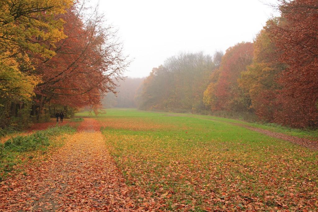 Amsterdamse Bos | © Mandie / Flickr
