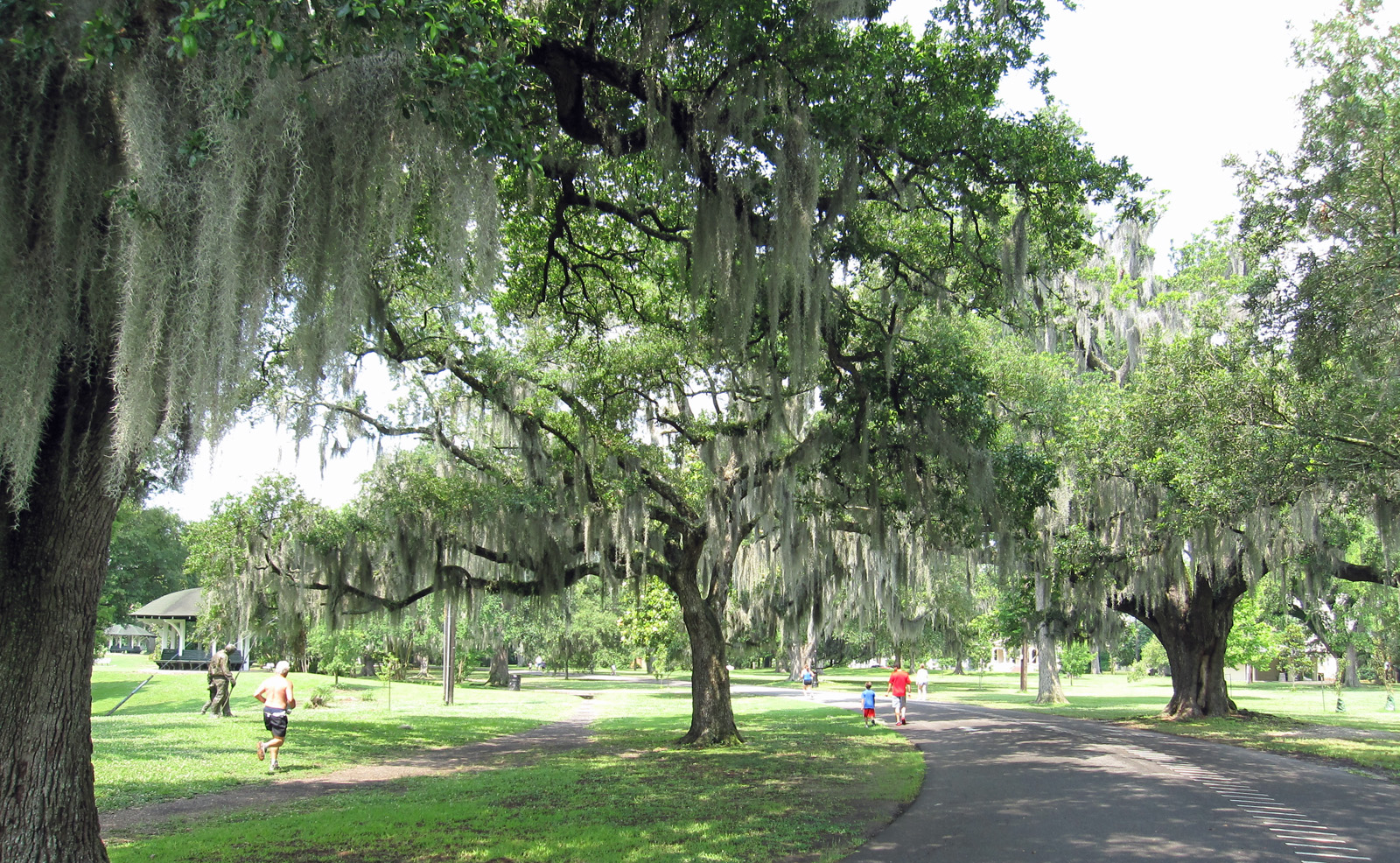 A Fitness Lover 39 S Guide To New Orleans