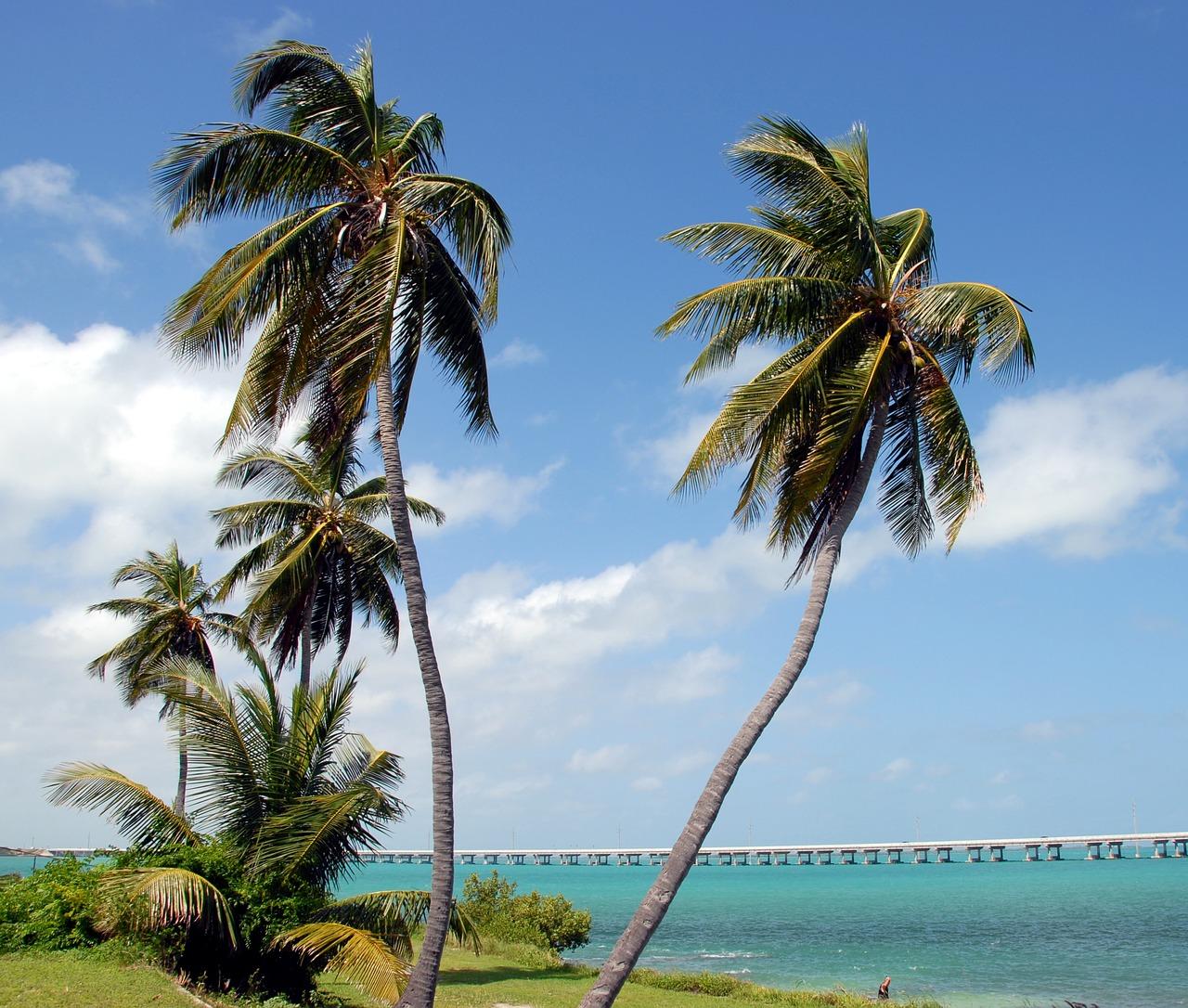 Bahia Honda State Park | Public Domain/Pixabay