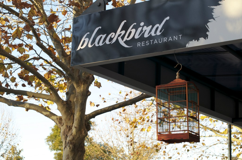 Blackbird Cage | Courtesy of Blackbird Restaurant