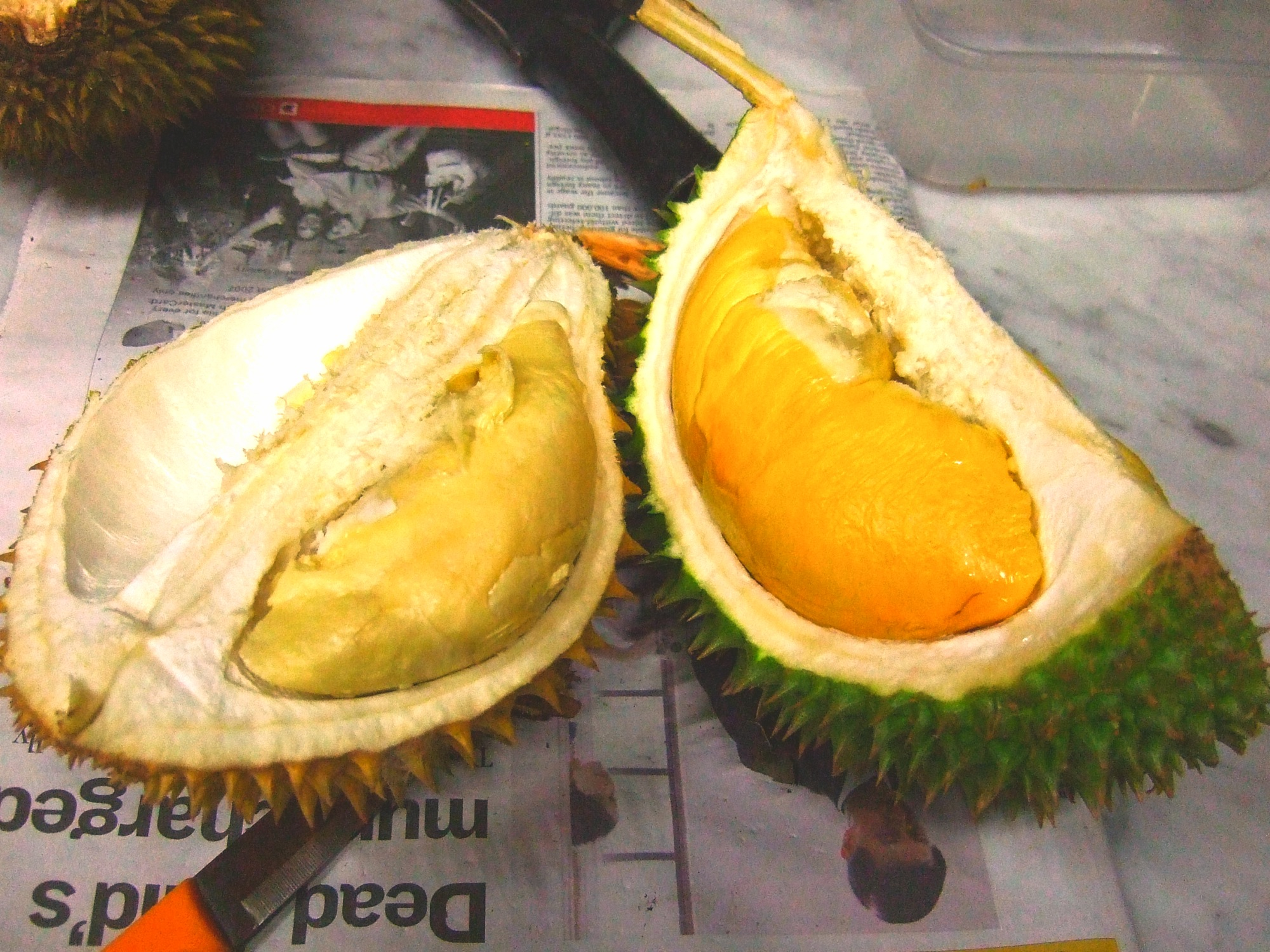 fruit bar durian fruit