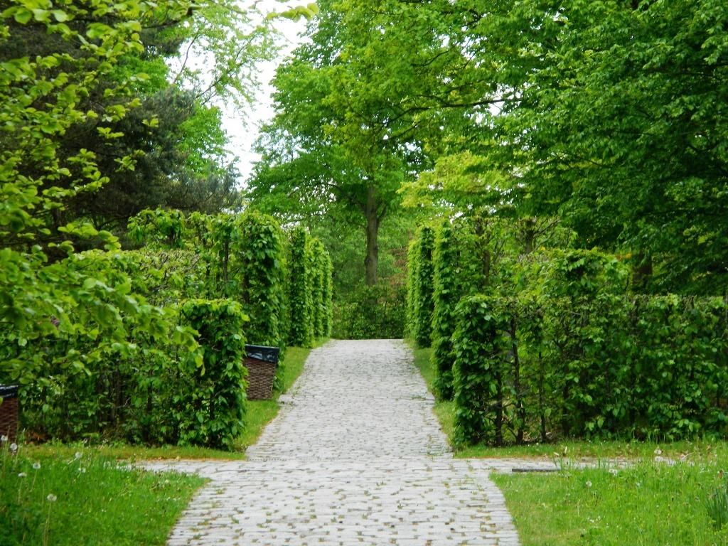A Tour Of Berlin's Britzer Garten