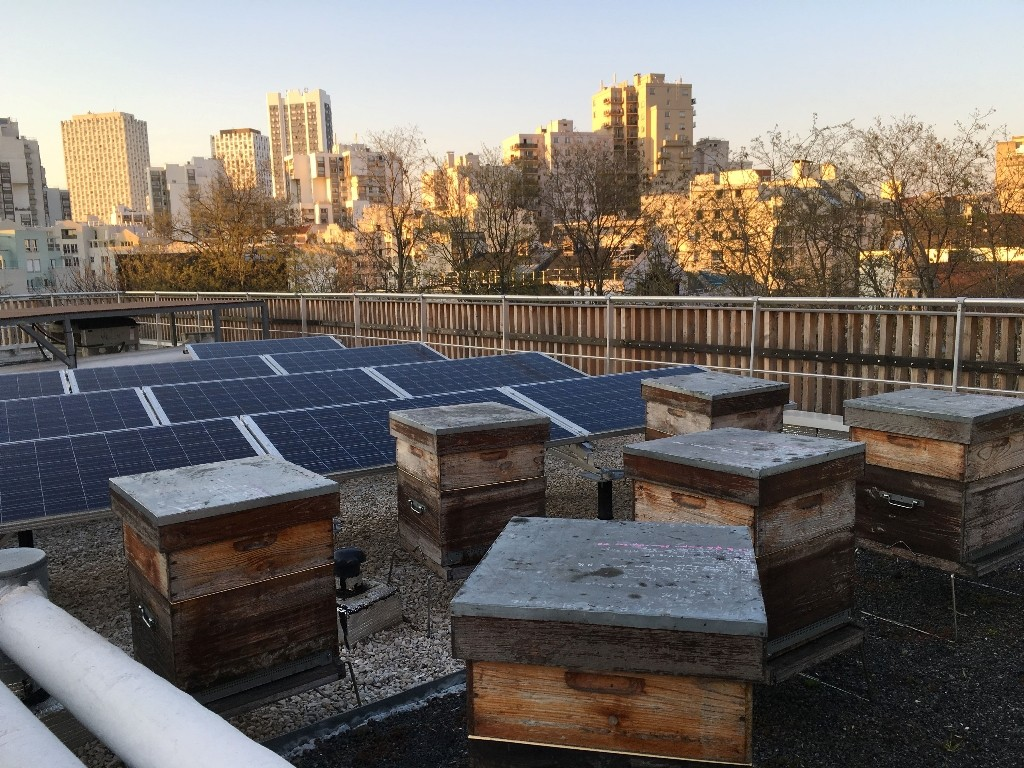 urban honey paris 39 5 best producers. Black Bedroom Furniture Sets. Home Design Ideas