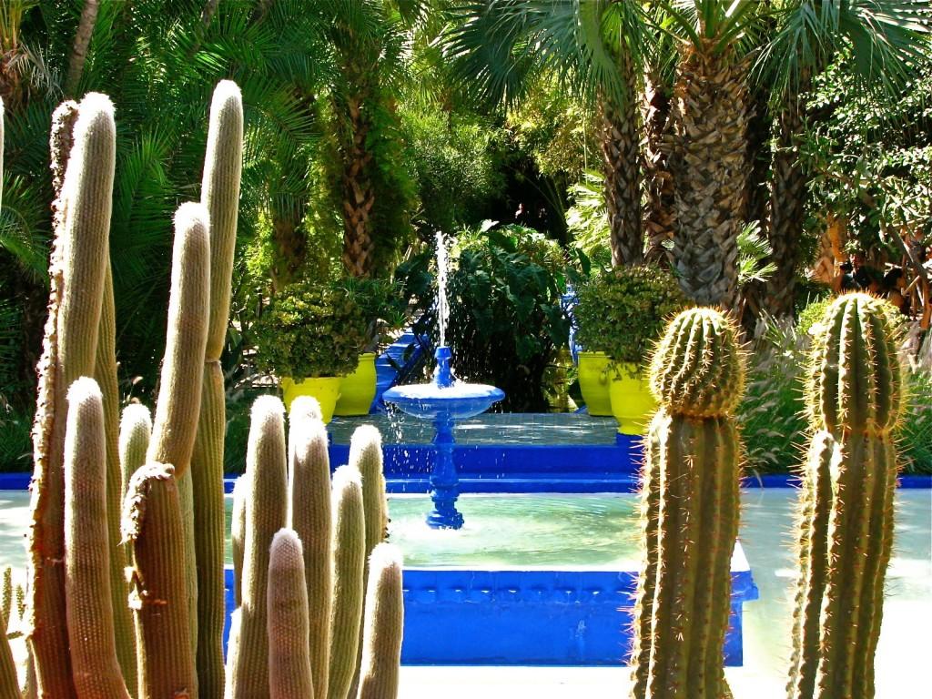 Majorelle Gardens © Mandy Sinclair