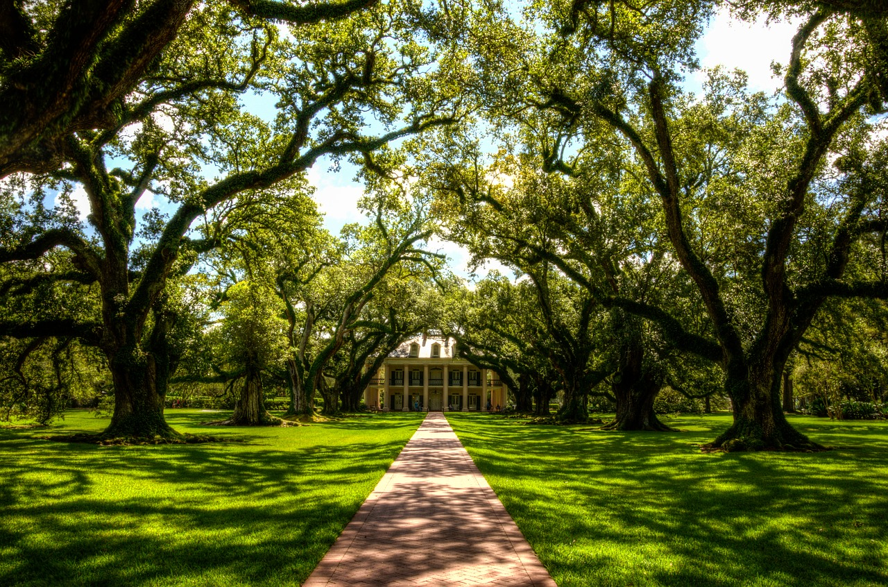 Oak Alley Plantation | © USA-Reiseblogger/Pixabay