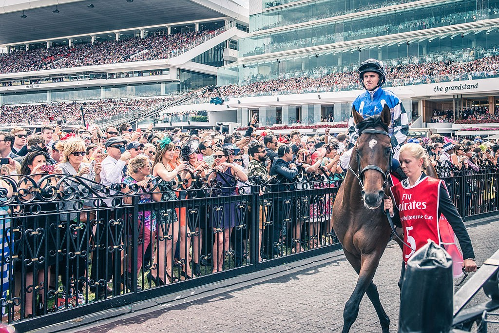 Protectionist before the 2014 Melbourne Cup | ©Chris Phutully/WikimediaCommons