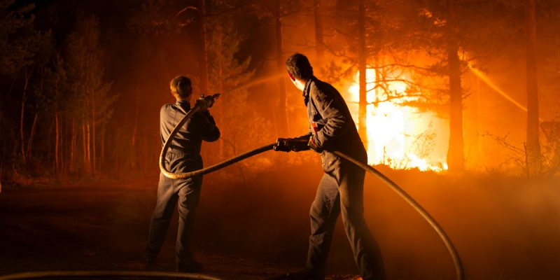 Pyromaniac | © TrustNordisk
