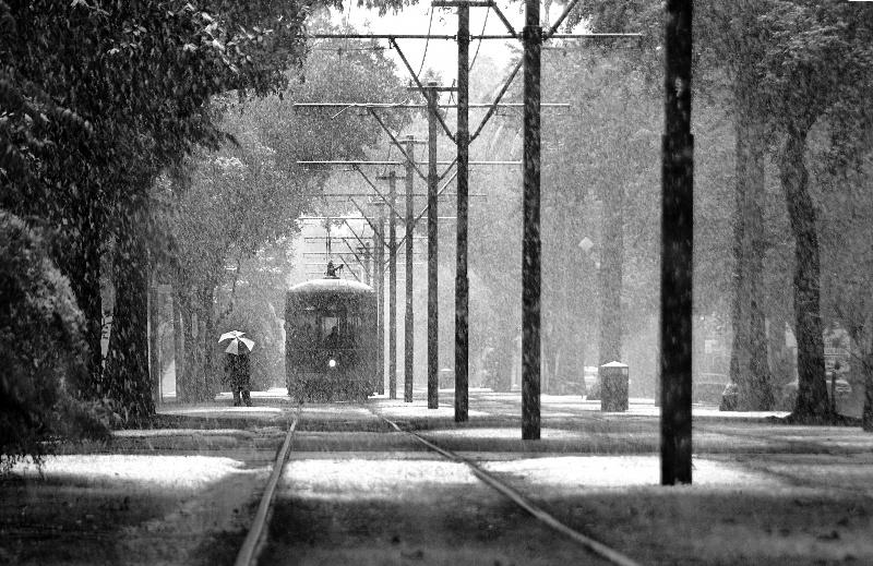 St. Charles Avenue Streetcar   © A. Murat Eren/WikiCommons
