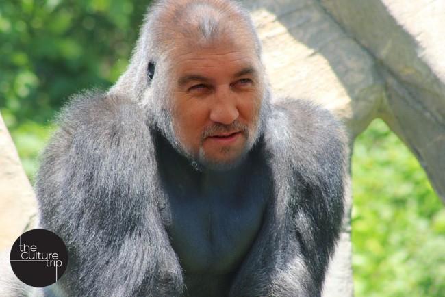 Sue described Paul Hollywood as 'the sourdough silverback'