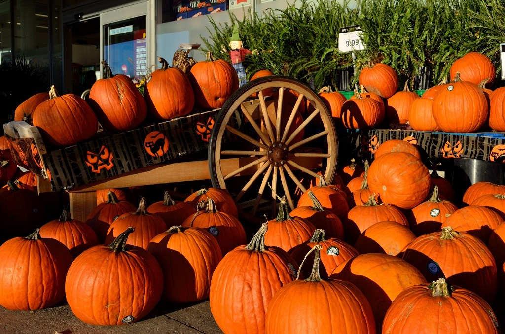 Pumpkins for sale in autumn, courtesy of Wikipedia