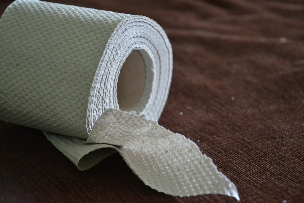 Toilet Paper/Courtesy of Pixabay