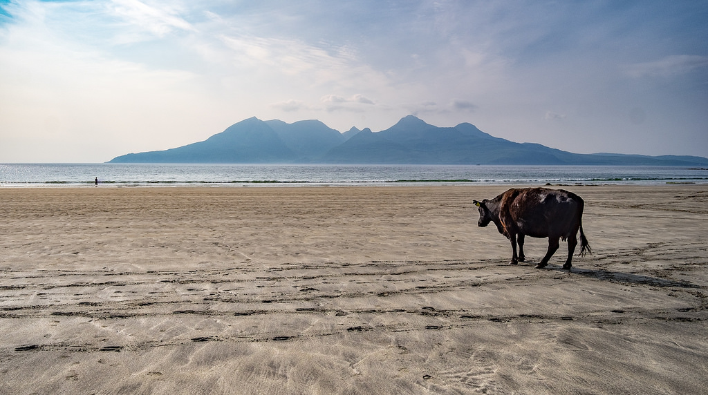 The Singing Sands On Eigg | © Mark/Flickr