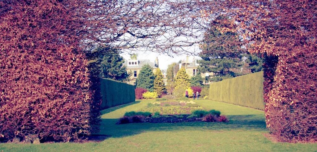 The Royal Botanic Gardens   © Laura Suarez/Flickr