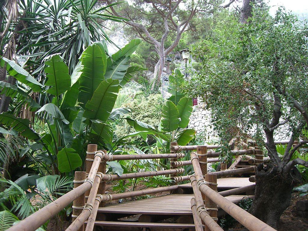 Alameda Botanic Gardens Gibraltar | ©ClareWilkinson