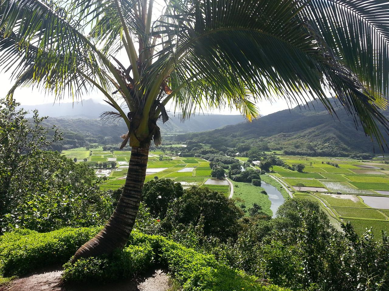 Hanalei, Kauai | Public Domain/Pixabay