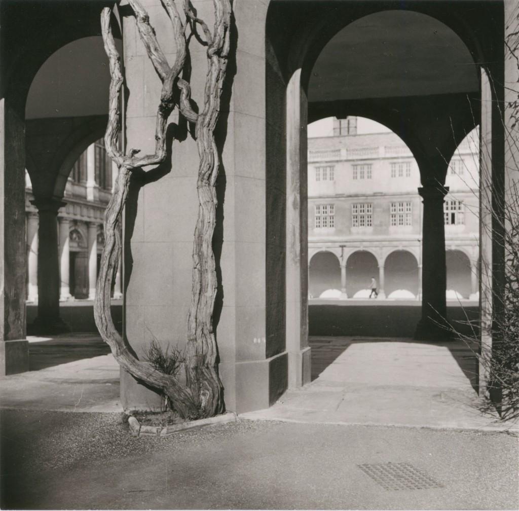 Lucia Moholy, Cambridge, 1936 Bauhaus-Archiv Berlin © VG Bild-Kunst Bonn