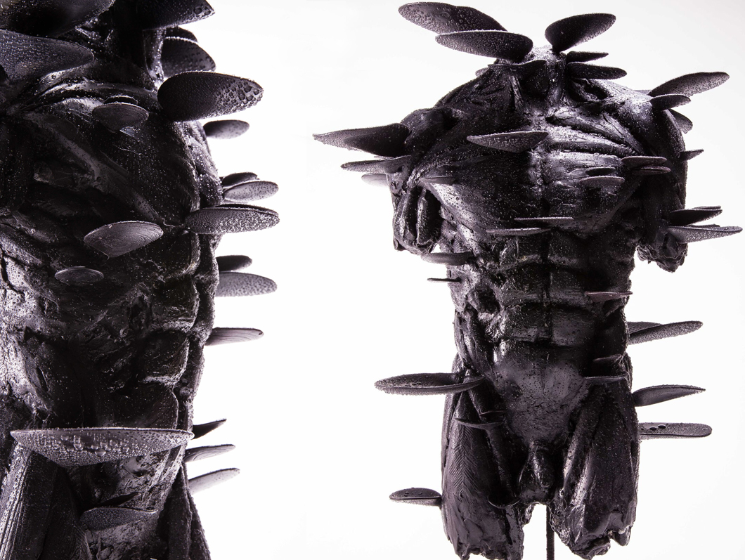 'Male Torso with Plates'   Courtesy Stanislaw Trzebinski