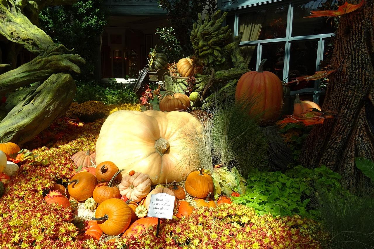 Pumpkin decorations, Las Vegas   Public Domain/Pixabay