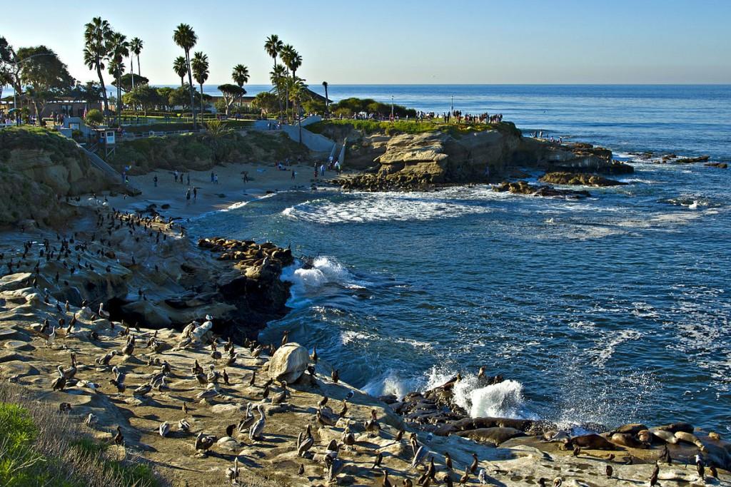La Jolla Cove © Dirk Hansen/Wikipedia