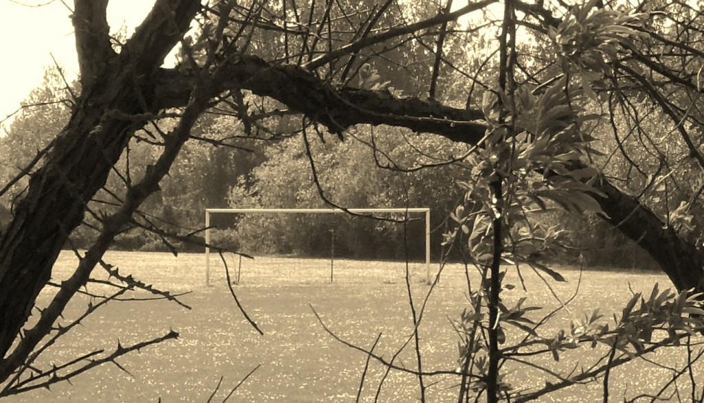 Goalposts | © grassrootsgroundswell/Flickr