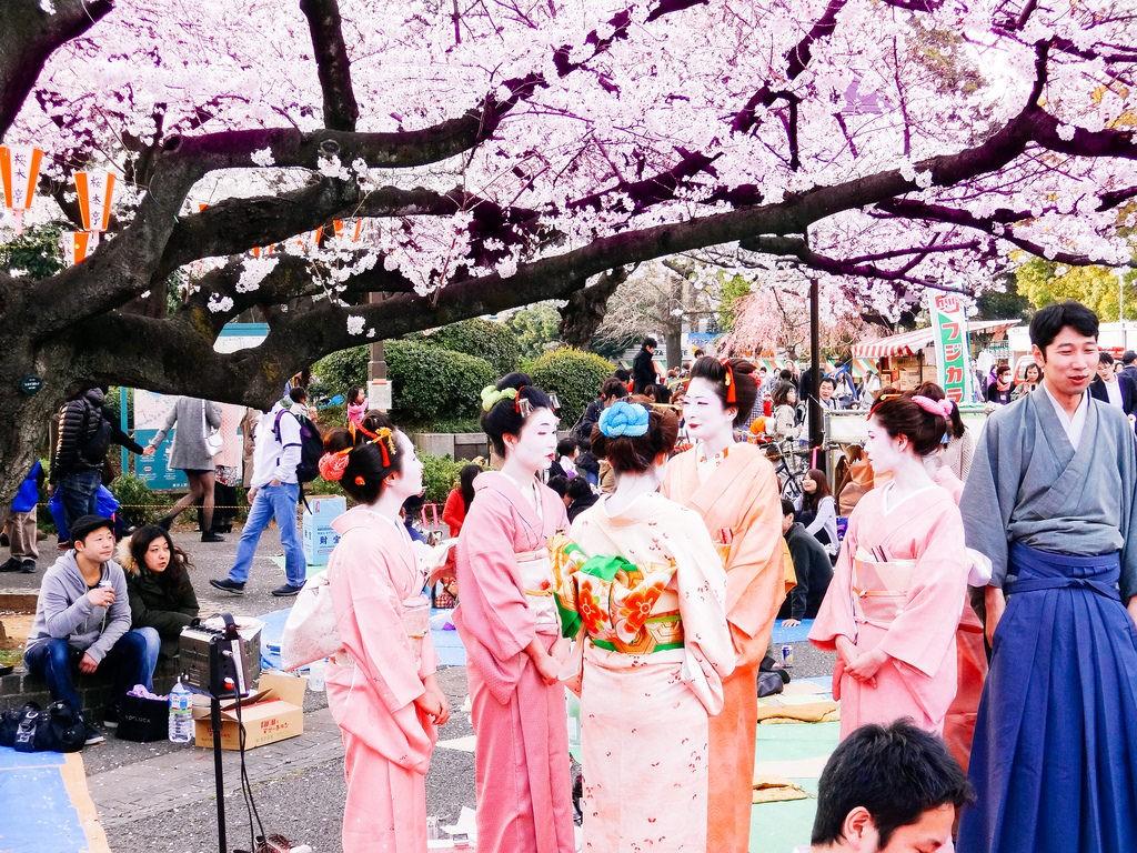 Hanami at Ueno Park | © Dick Thomas Johnson/Flickr