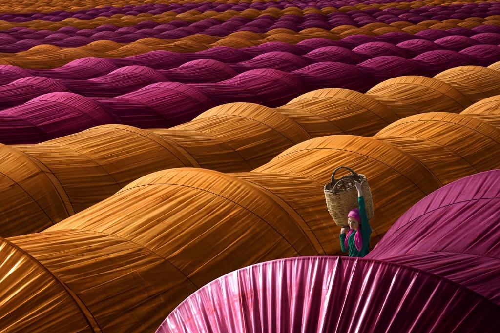 Nazilli, Aydin Strawberry Greenhouses © Leyla Emektar