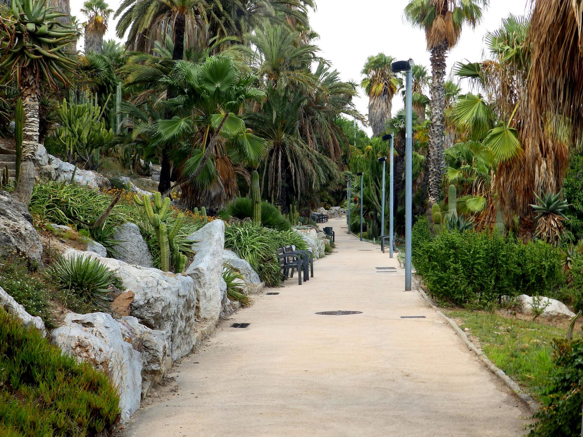 Jardin Mossèn Costa I Llobera | © Amante Darmanin