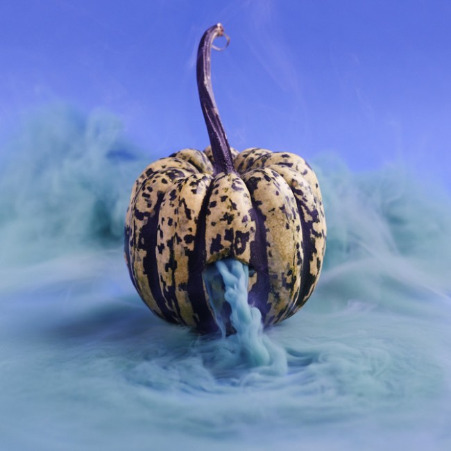 Carnival Squash, Secret Lives, Courtesy of Maciek Jasik
