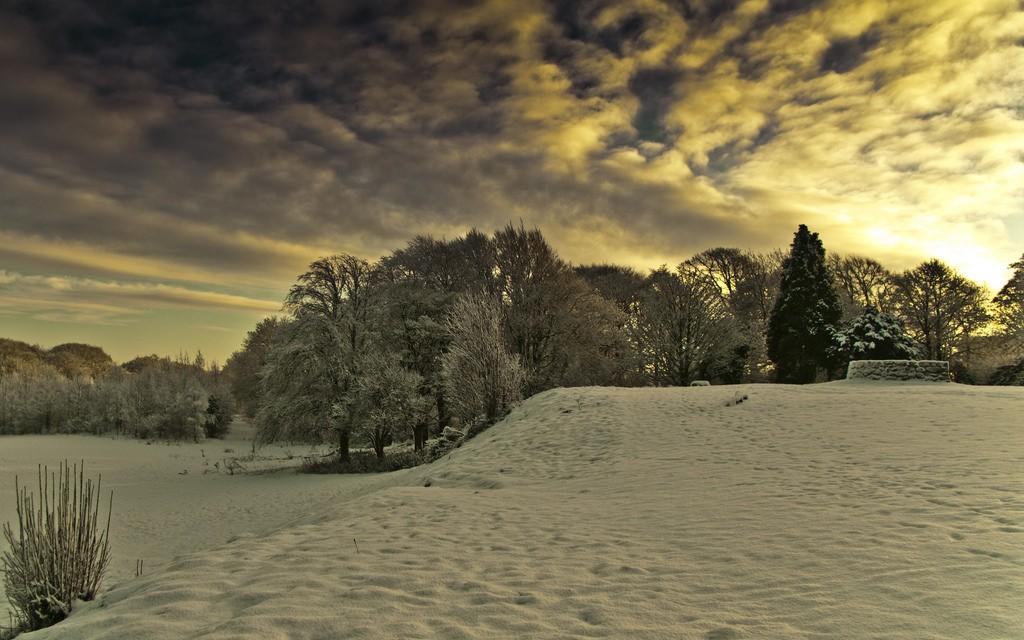Cathkin Braes   © Colin Macdonald/Flickr