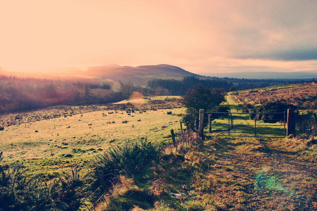 Winter Sun in Ireland | © john.purvis/Flickr