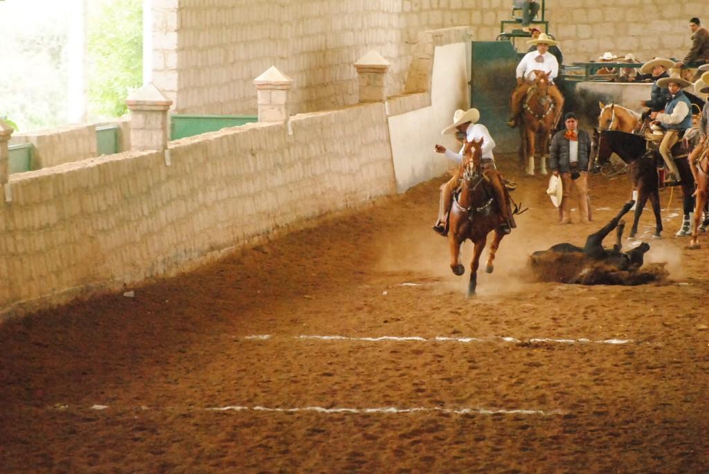 Charro takes a tumble | © La Voz de la Charrería/Flickr