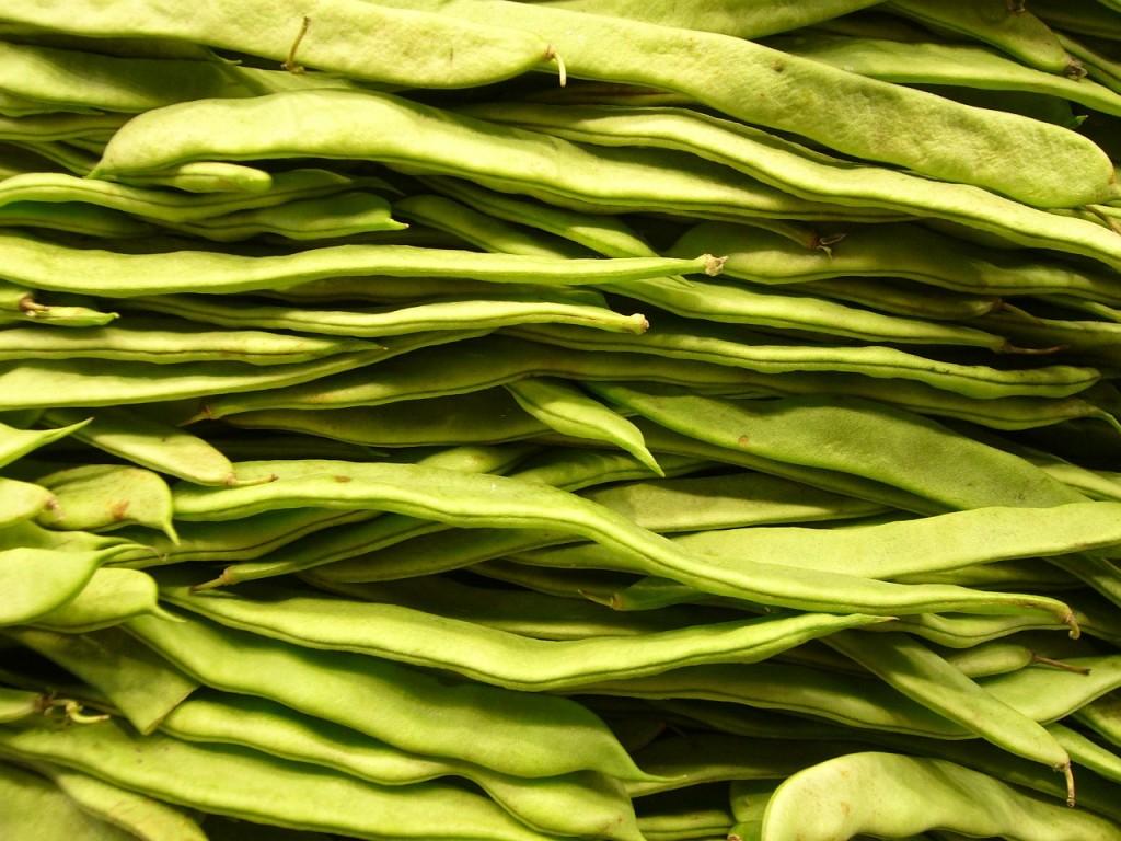 Green beans │© LoggaWiggler