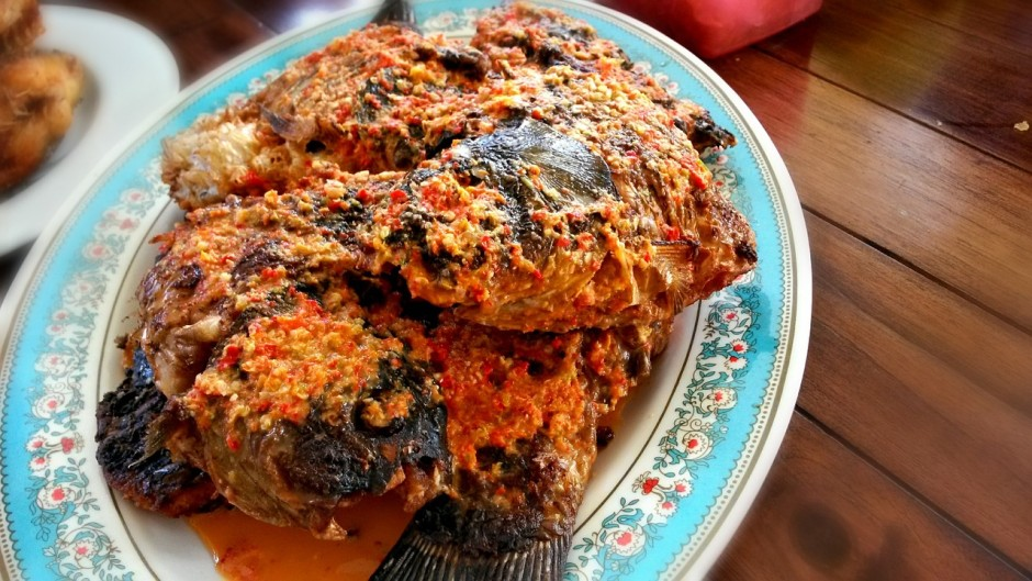 Indonesian fish curry │© 4547