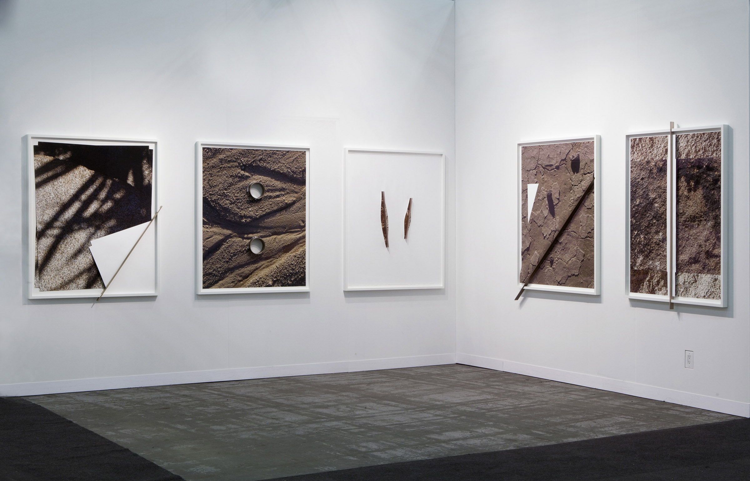 "Installation view at Armory Show 2016 Joshua Tree Bronze Push series, 2016 Archival inkjet prints, bronze, museum plexiglas, wood frame Each approx 60"" x 45"" x 2 1/8"" 