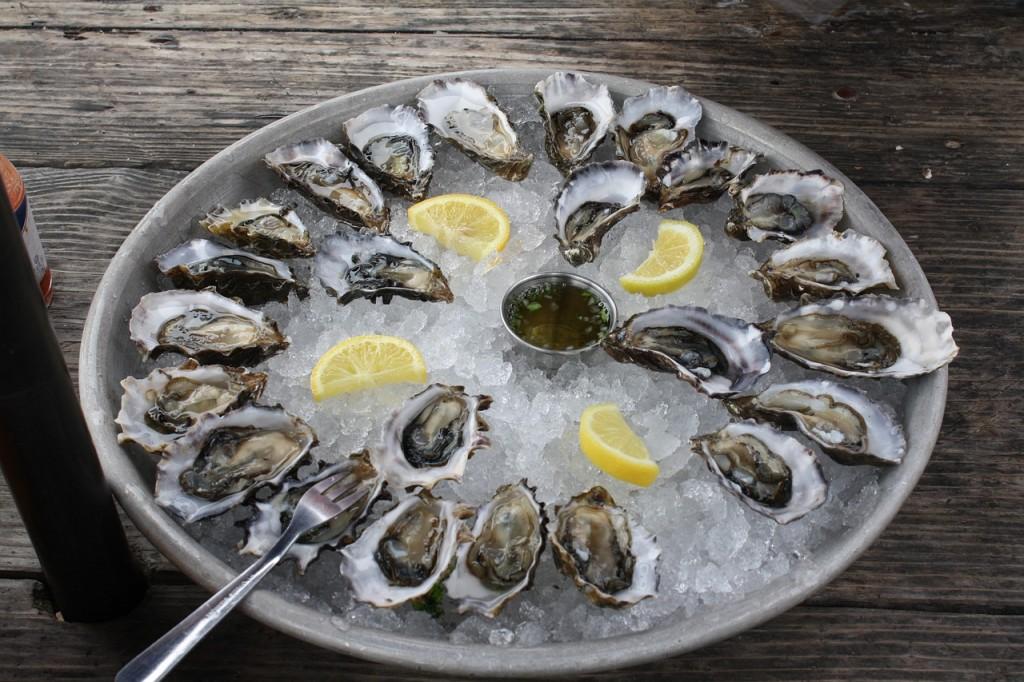 Oysters │© rfsyzygy