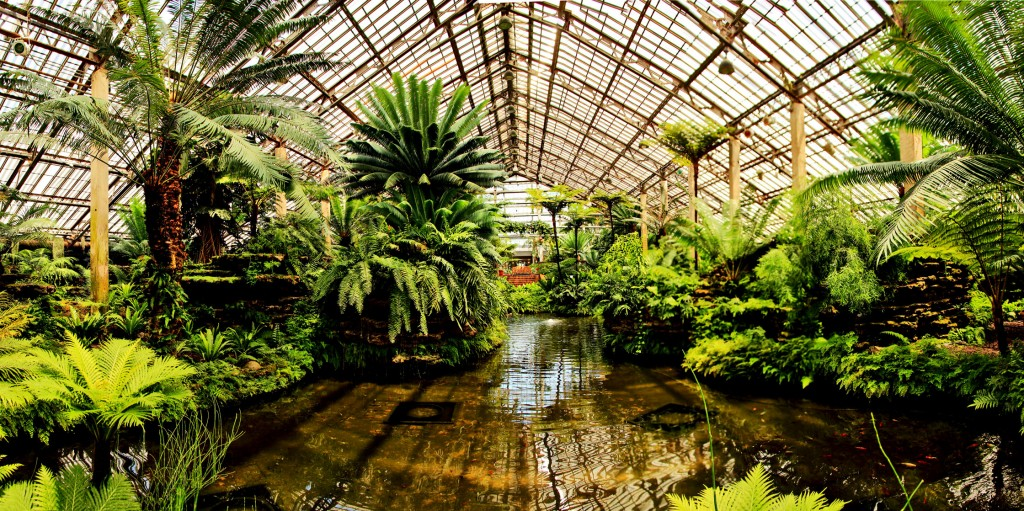 Garfield Park Conservatory, courtesy of