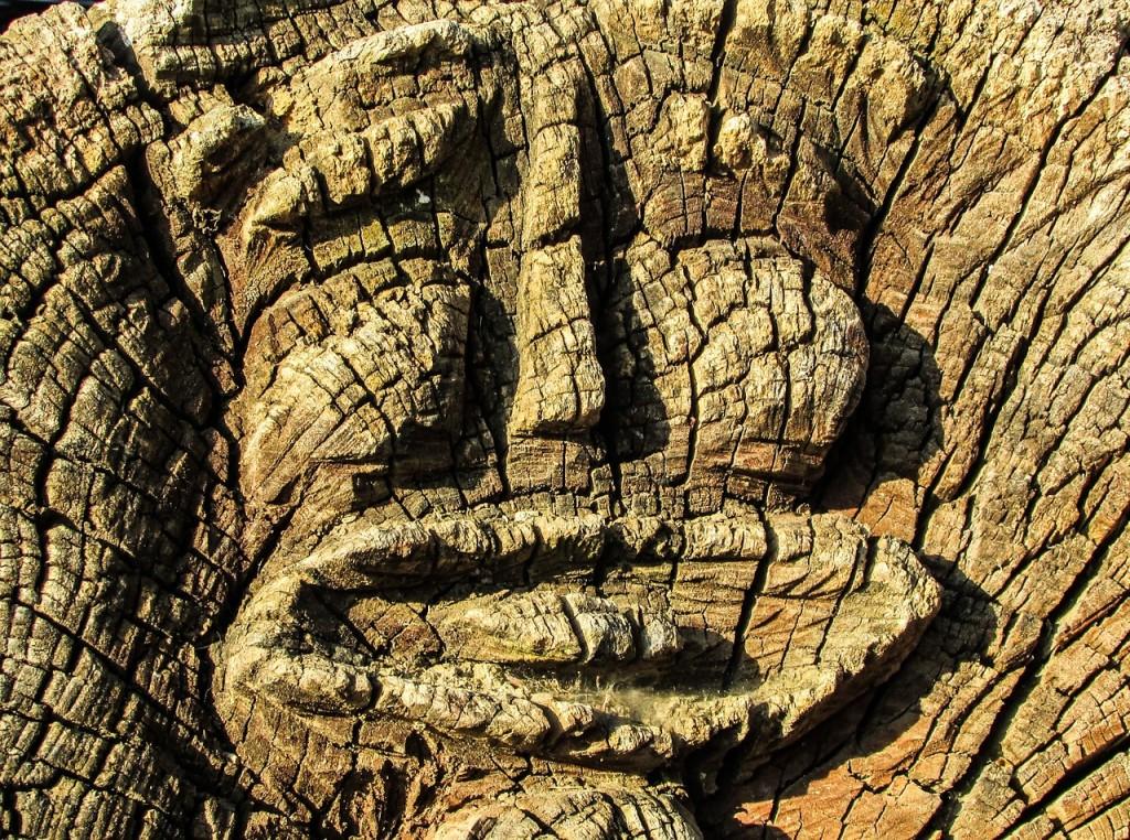Wooden face | © dimitrisvetsikas1969/pixabay