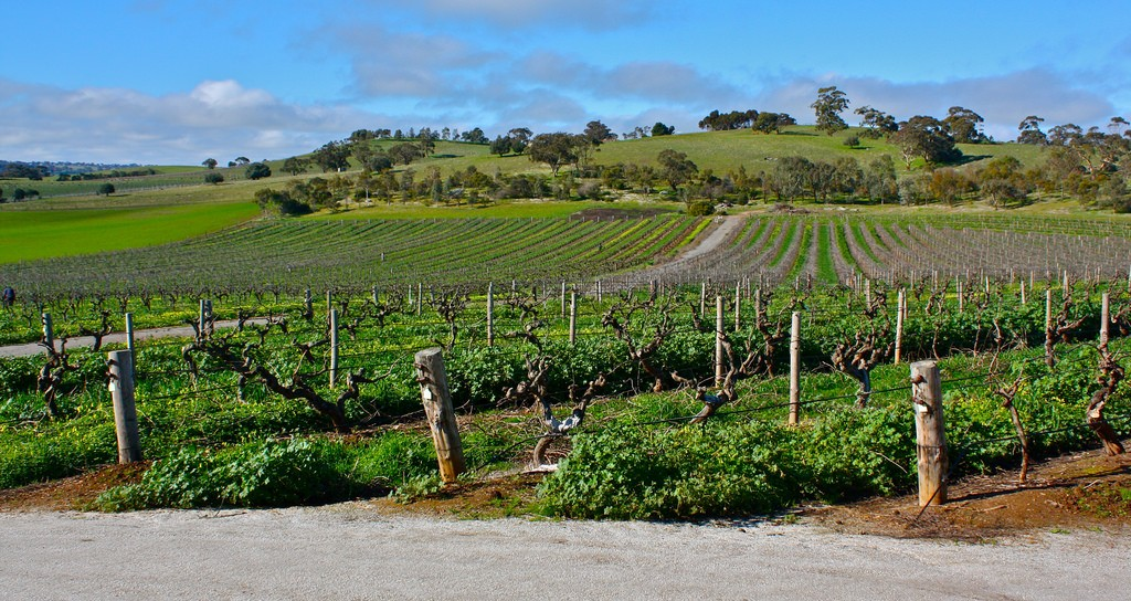 The Barossa Valley - 10 © Kyle Taylor/Flickr