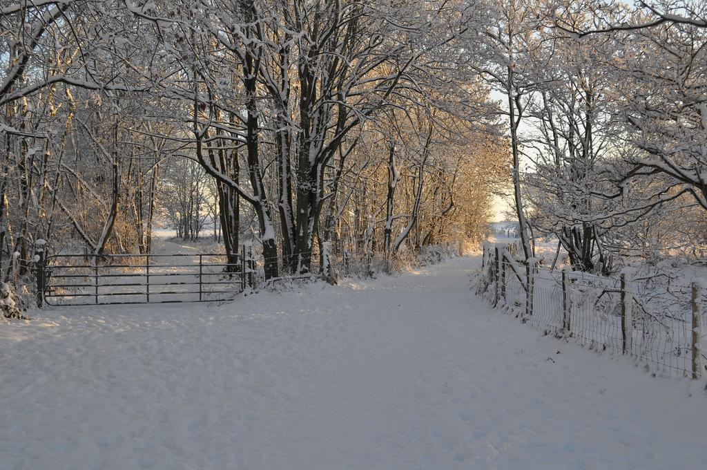 Snowy Christmas Eve in Portstewart | © horslips5/Flickr