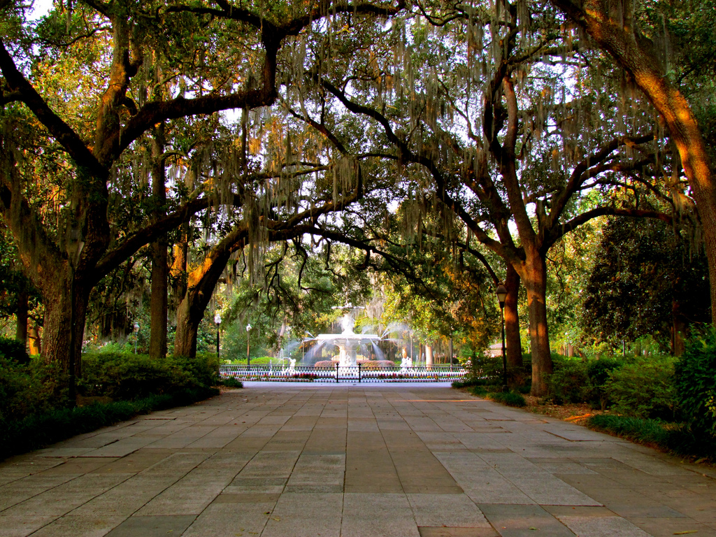 Savannah | © Jeff Gunn/Flickr