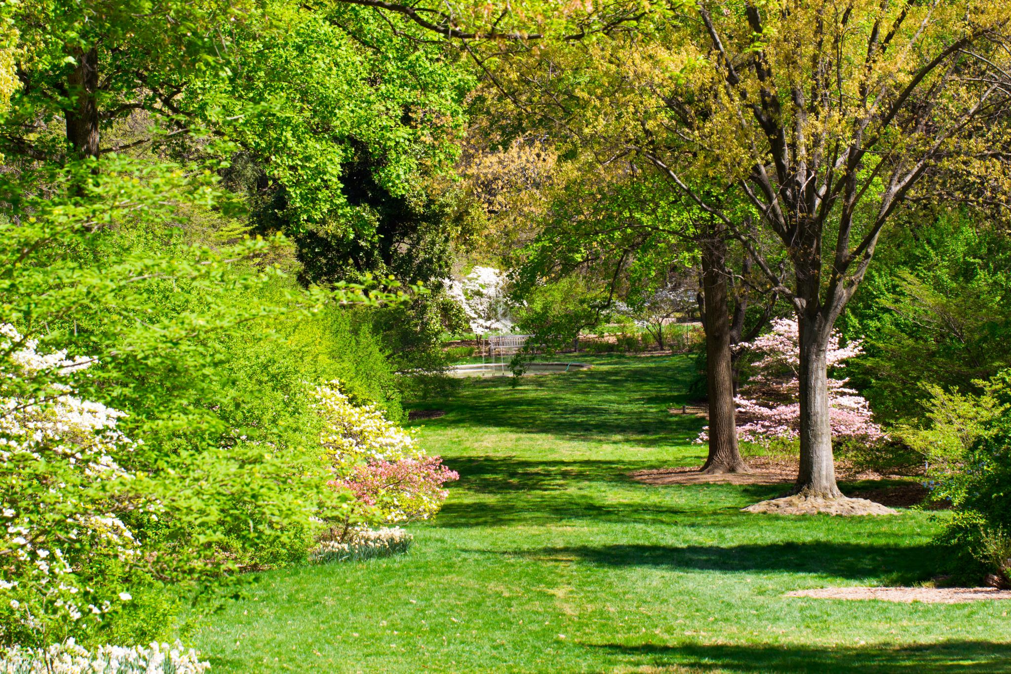 Why The National Arboretum In Washington D C Is A Must Visit