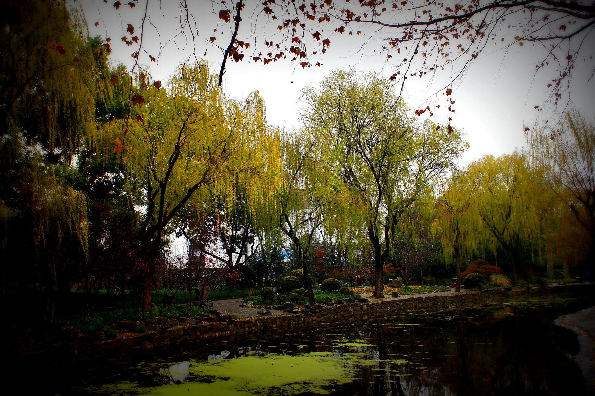 Lu Xun Park in Shanghai | David Veksler/Flickr