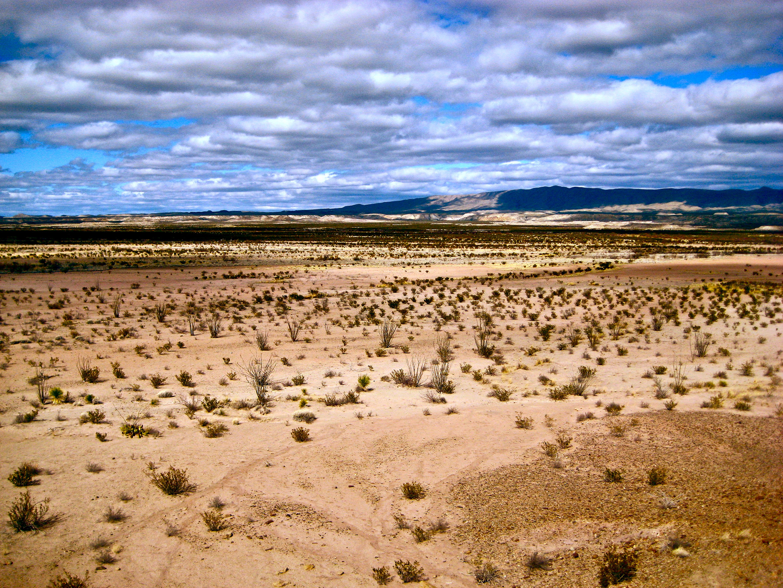 Big Bend National Park © ivyst/Flickr