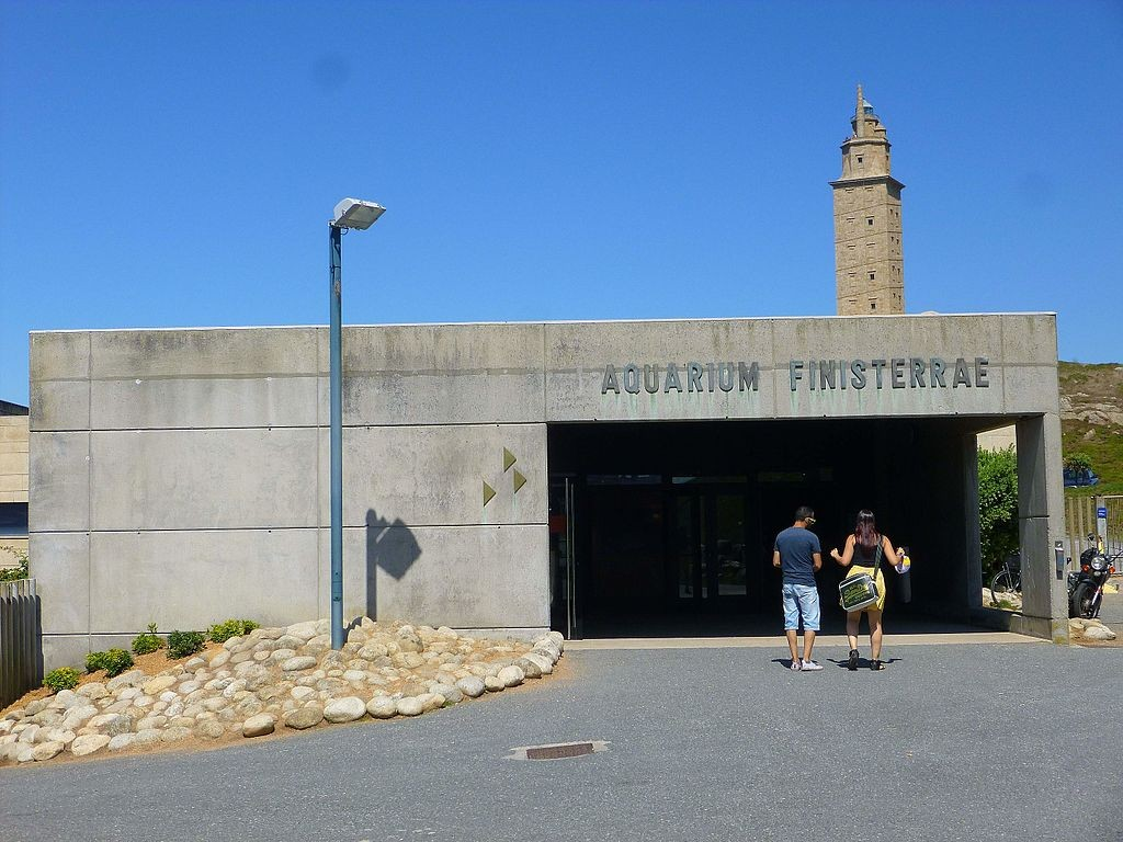 Aquarium Finisterrae, A Coruña | ©Zarateman / Wikimedia Commons