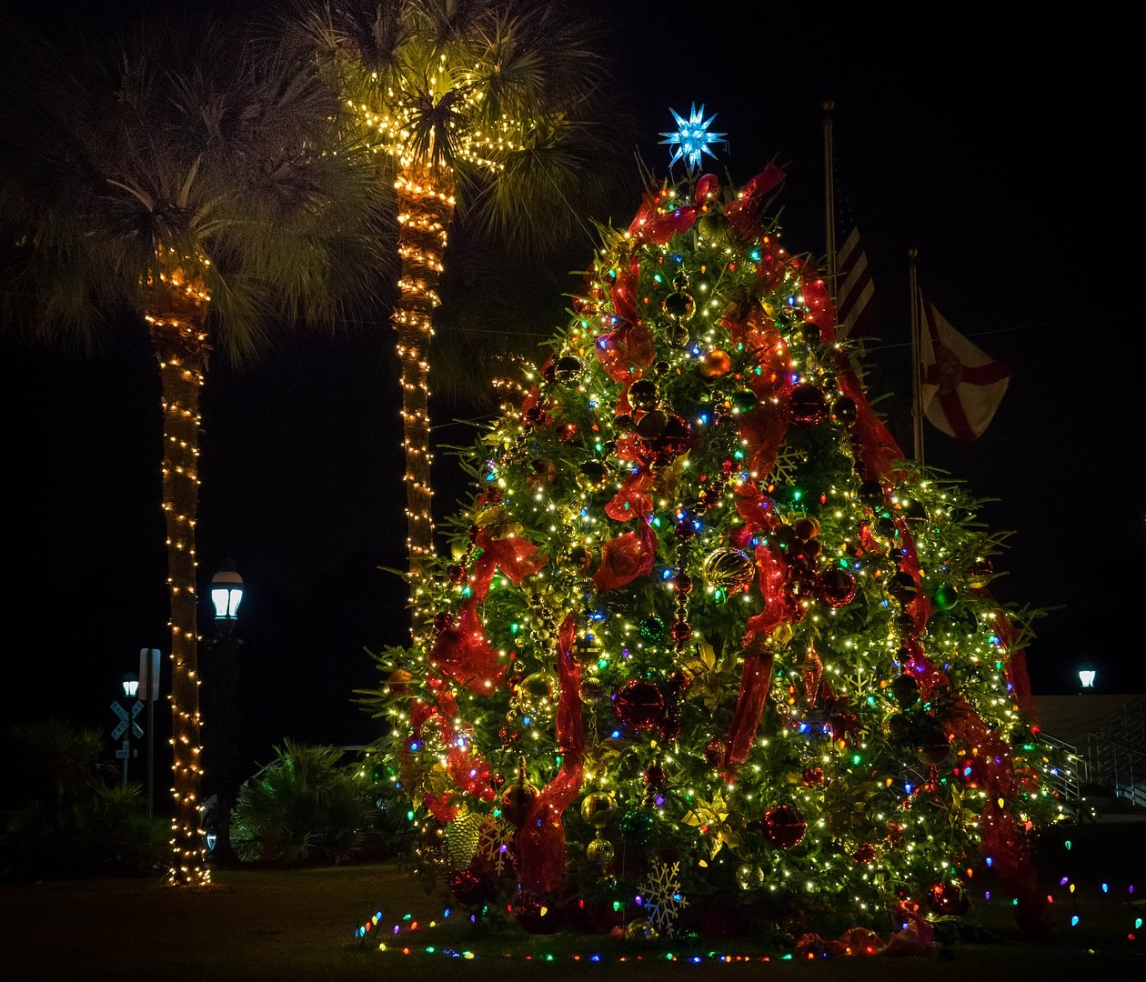 Florida Christmas.How To Celebrate Christmas In Florida