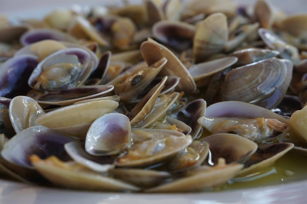 fresh seafood, Huelva   ©Spain-Holiday.com