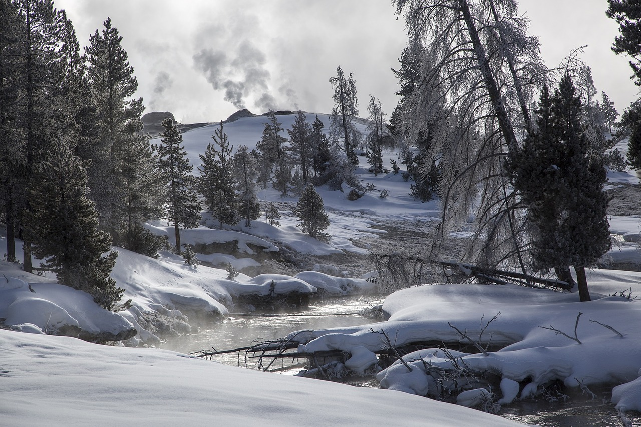 17 Photos That Prove Wyoming Is A Wintry Dreamscape