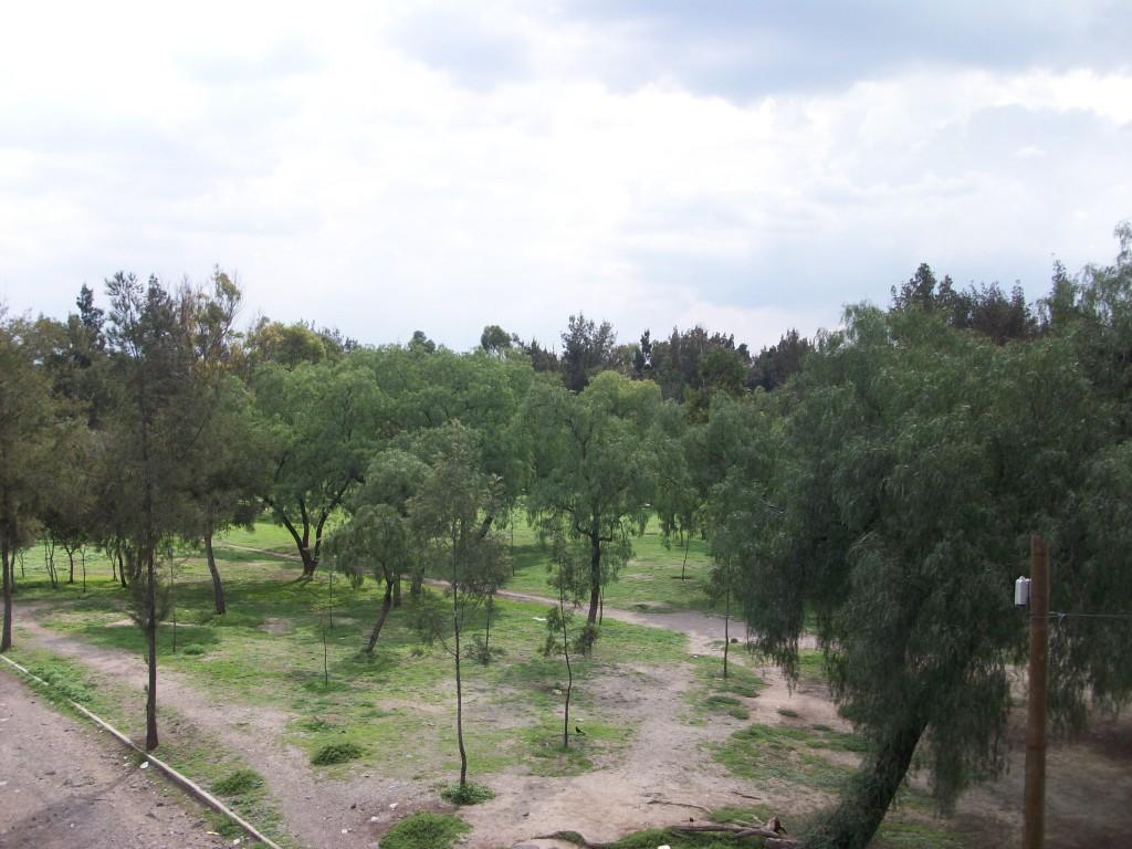 Bosque de Aragón | © GAED/WikiCommons